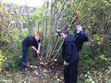 coppicing in the school woodland.