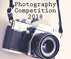https://gateway.dorothy-stringer.co.uk/public/ParentNewsletter/photocomp.jpg